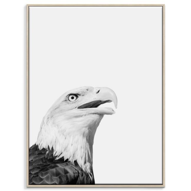 Eagle | Canvas or Print by Artist Lane
