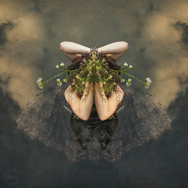 Emergence by Kellie North | Limited Edition Print | Art Lovers Australia