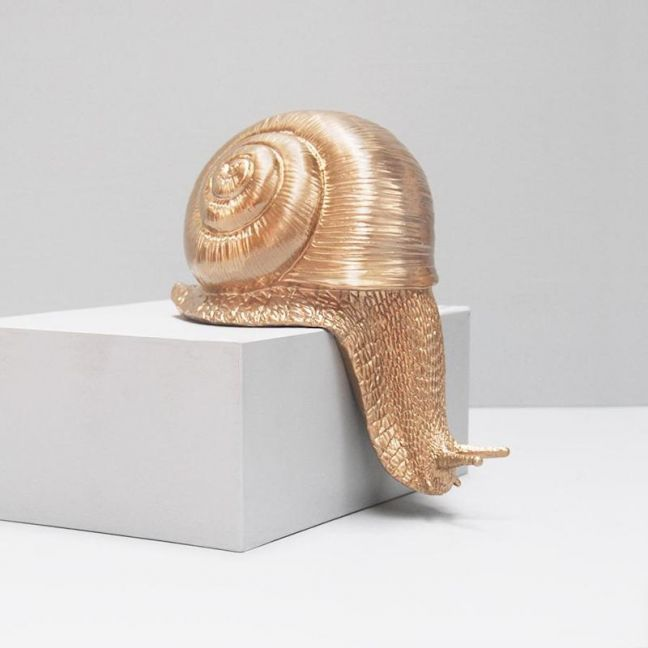 Escaping Snail | Gold