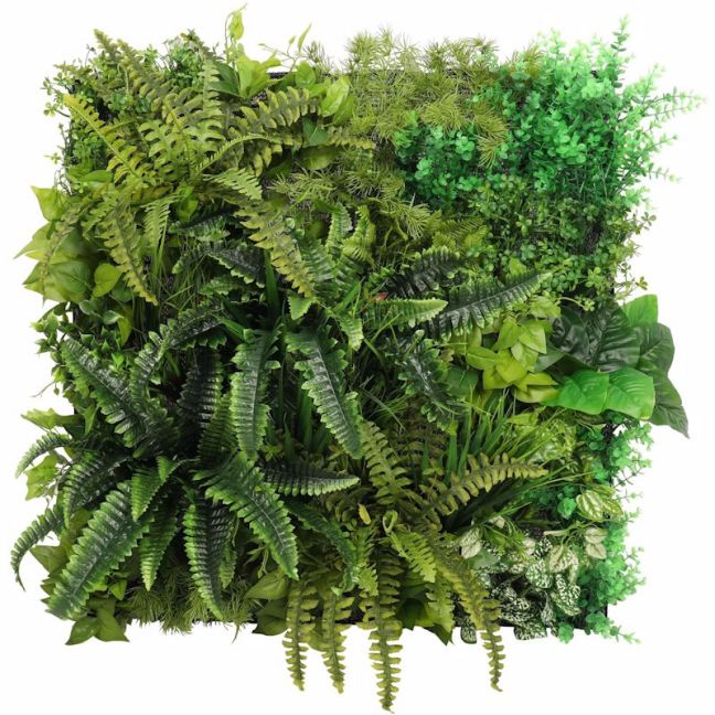 Evergreen Bespoke Vertical Garden / Green Wall 90cm x 90cm | INDOOR ONLY