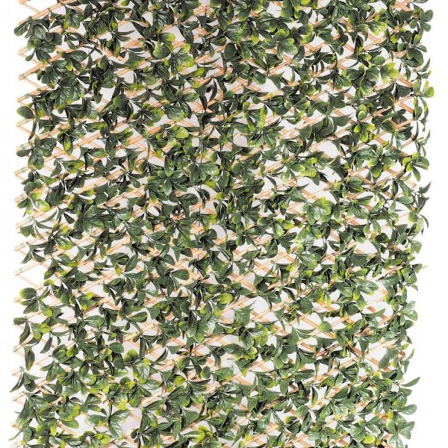 Extendable Laurel Leaf Trellis | 2m by 1m
