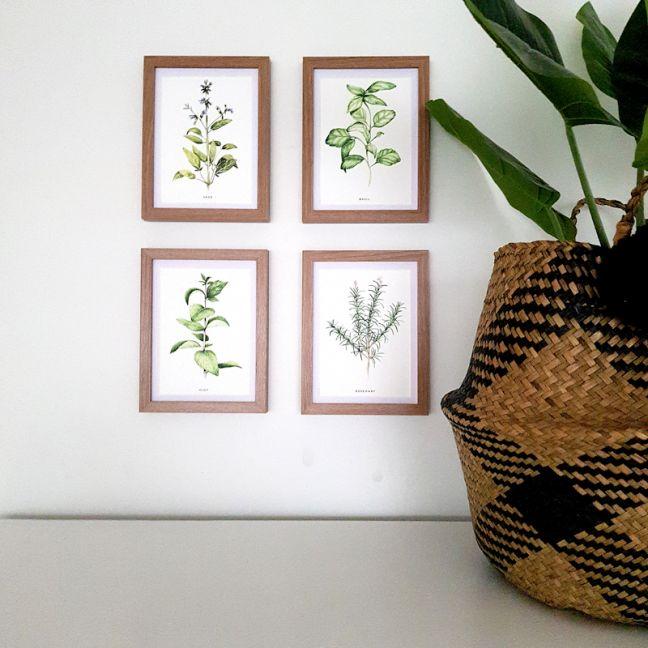 Herbs    Watercolour Prints Set