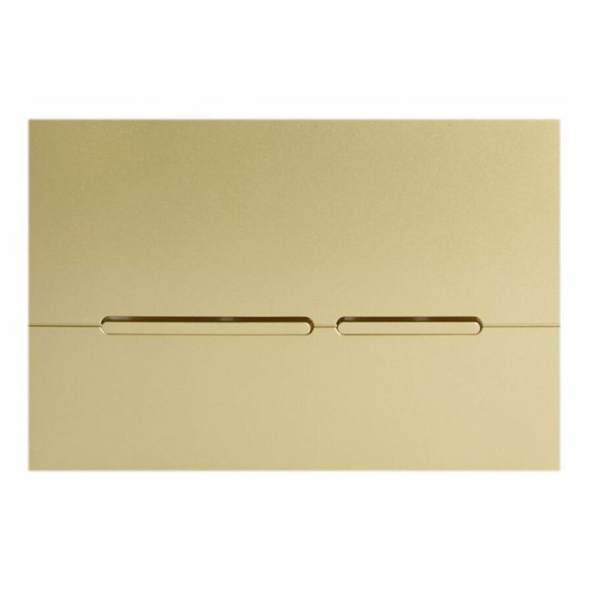 Hideaway Thin Button Plate Inwall ABS Champagne   Reece