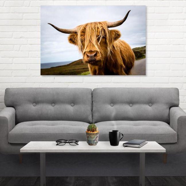 Highland Cow   Canvas Artwork