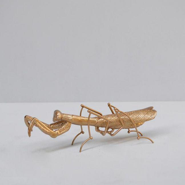 Insect | Praying Mantis | Gold | White Moose