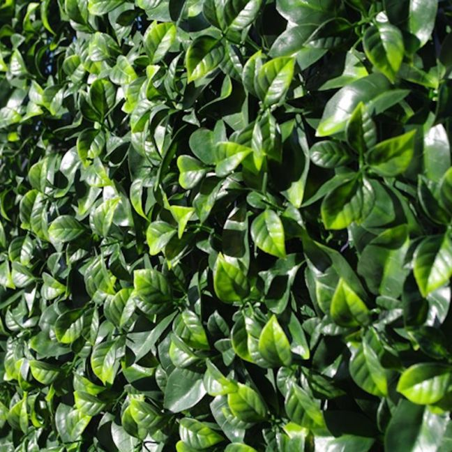 Jasmine Leaf Screens | UV Stabilised