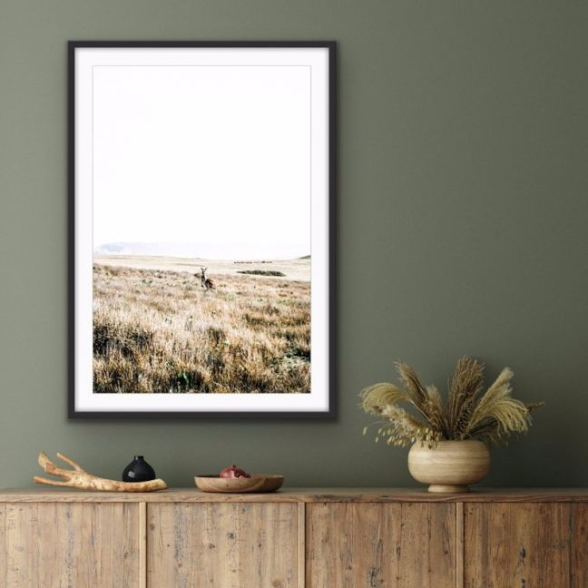 Kangaroo Wild   Wall Art or Canvas Print