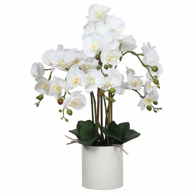 Large White Potted Faux Orchid | 65cm