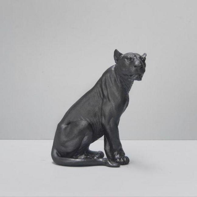 Lioness | Black