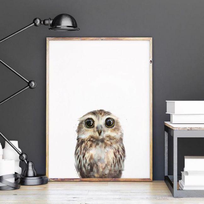 Little Owl by Amy Hamilton | Unframed Art Print
