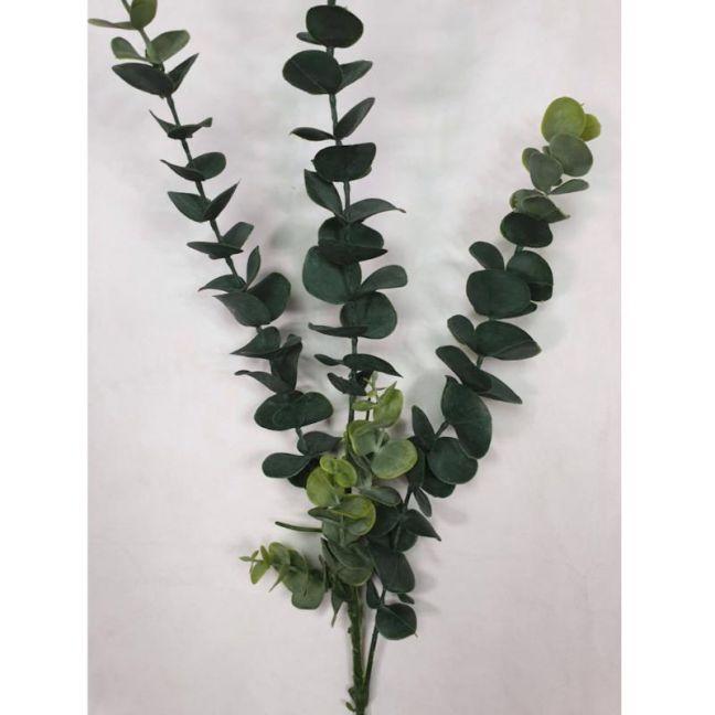 Long Eucalyptus Stem   77cm