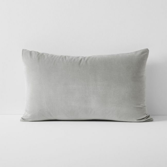 Luxury Velvet Standard Pillowcase | Dove by Aura Home