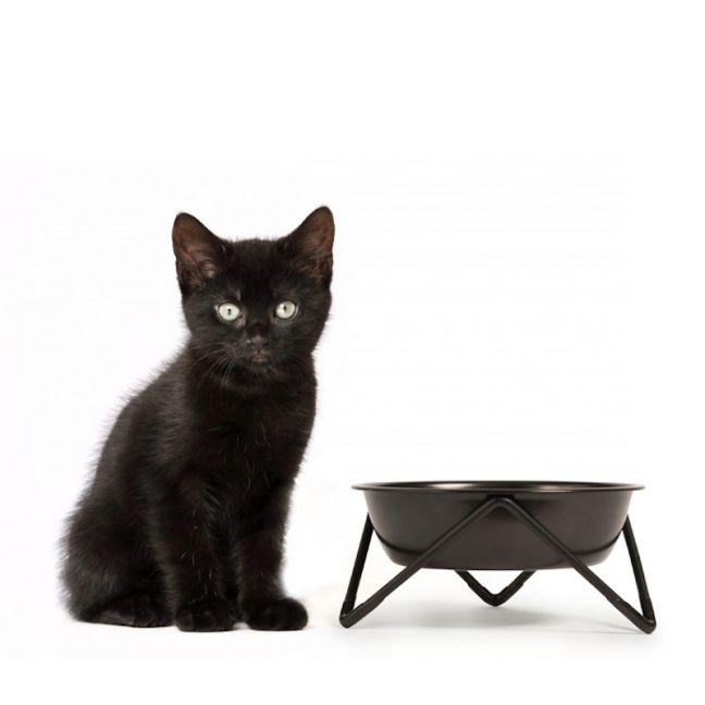 MEOW   Cat Bowl   Black on Black