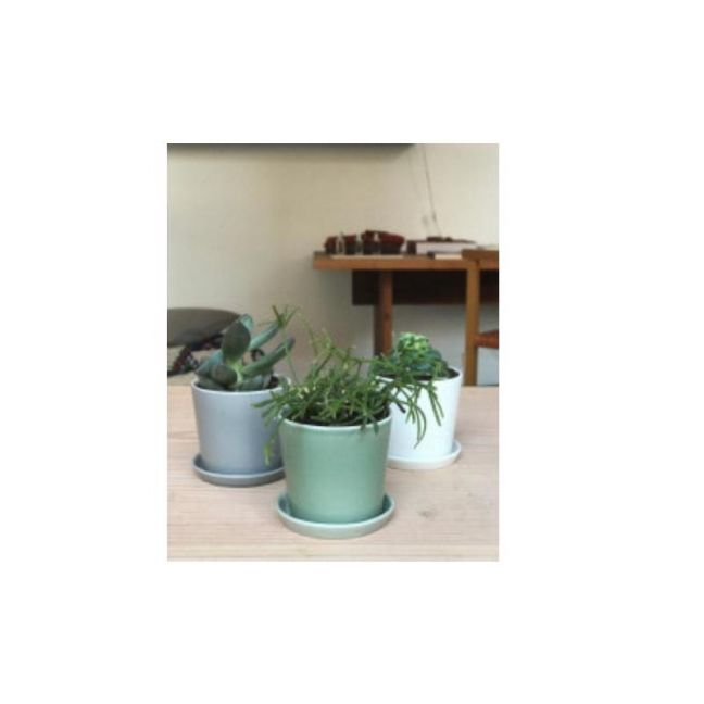 Mini Flowerpot set by Anne Black