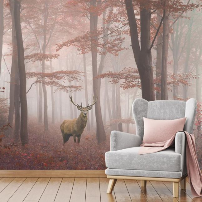 Misty Forest | Full Wall Mural | Various Sizes