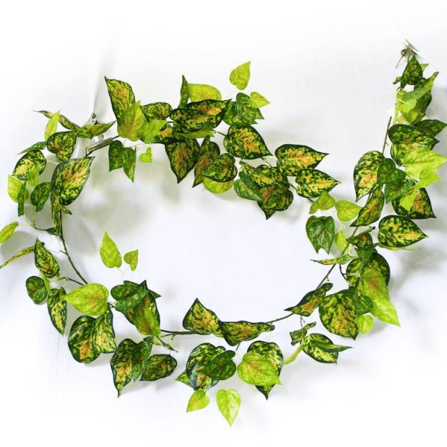 Mixed Yellow and Red Pothos Garland | 190cm
