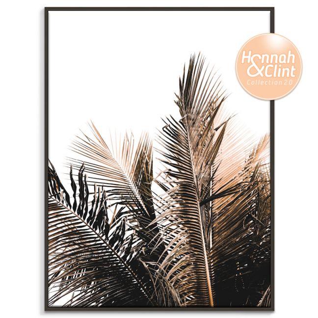 Palm Top | Hannah and Clint X Artist Lane