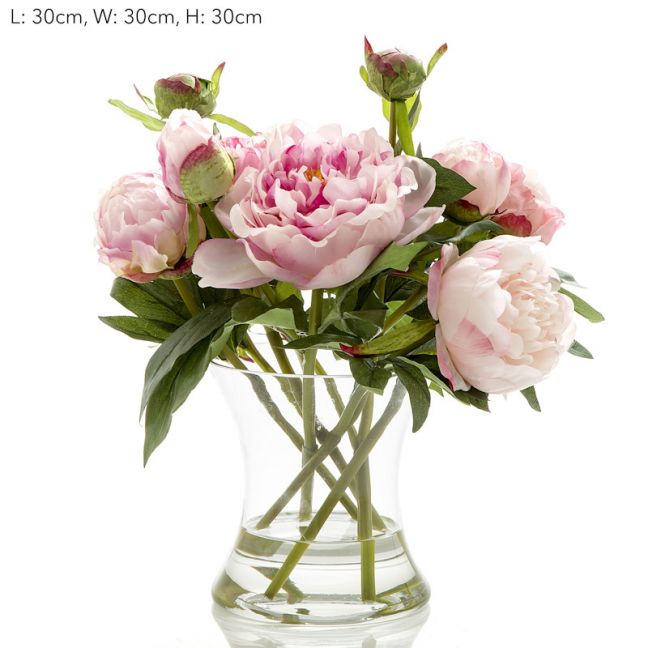 Peony in Water in Glass Vase | Pink