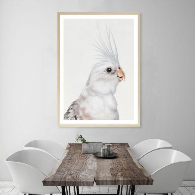 Pia The White Cockatiel Premium Art Print (Various Sizes)