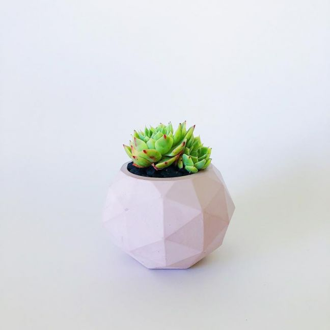 Planter | Clover | Blush Pink | by Coral and Herb