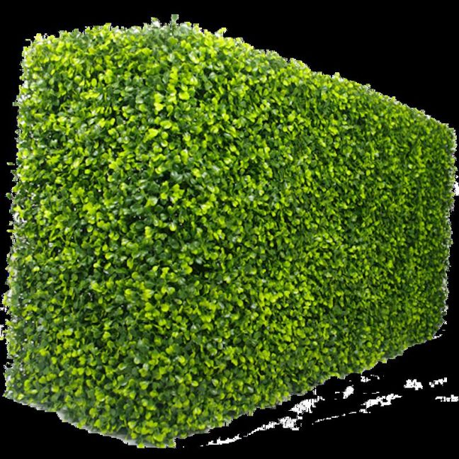 Portable Boxwood Hedge | Artificial Plants