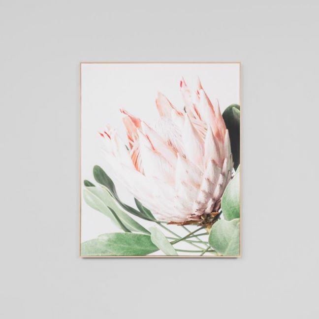 Protea Flower Canvas