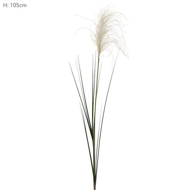 Reed Grass Spray x 12