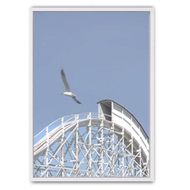 Roller Coaster Framed Canvas Print | White Moose