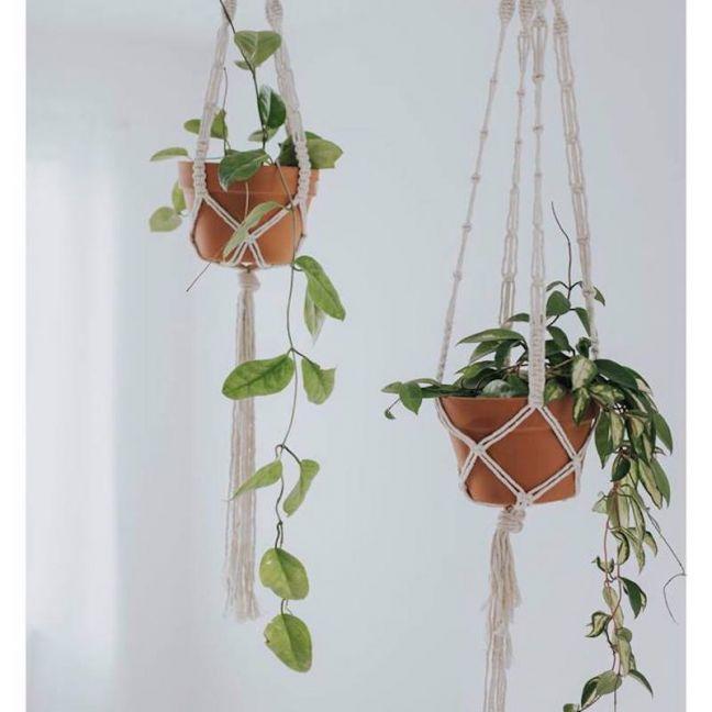 Rope Macrame Plant Hanger   Stix & Flora