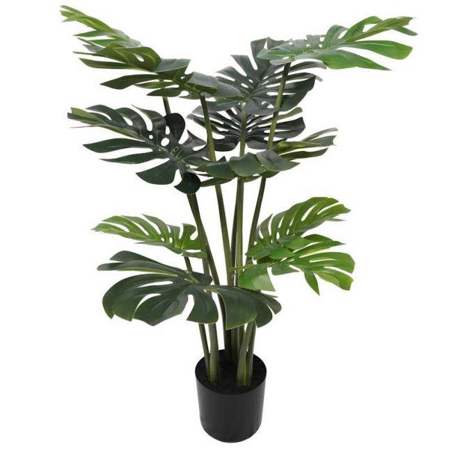 Split Philodendron Split Leaf | 120cm