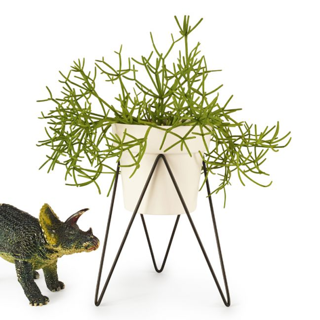 Sprout   Mini Plant Stand
