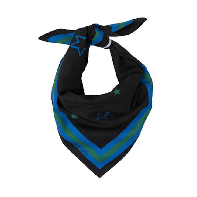 Stars Dog Scarf | Blue and Green