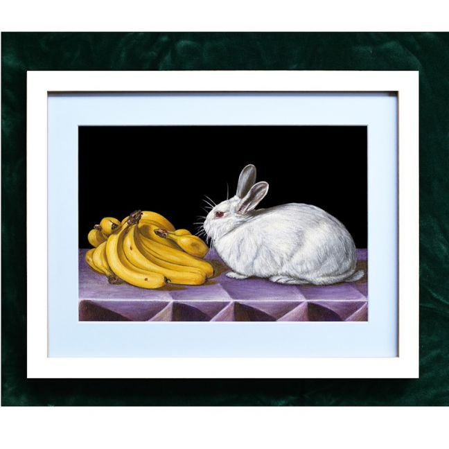 Still Life with Rabbit and Bananas | Framed A4 Print by Chris Beaumont