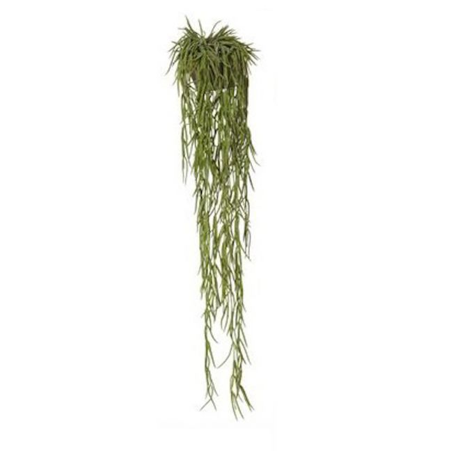 Succulent Potted Faux Plant | Old Mans Beard