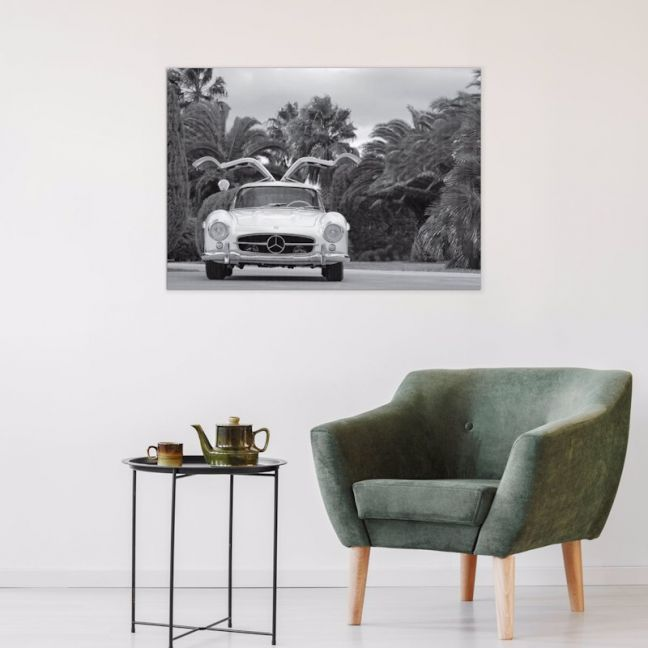 The Gullwing | Stretched Canvas | Printed Panel