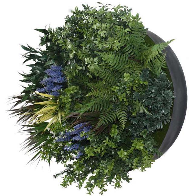 UV Lavender Fields | 60cm | Green Wall Disc | Black