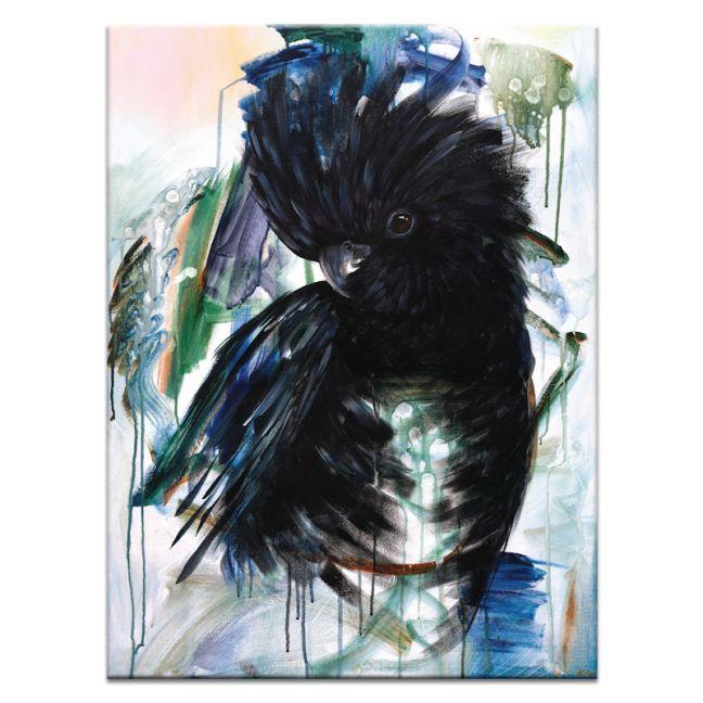 Vincent Black Cockatoo | Amanda Skye-Mulder | Canvas or Print by Artist Lane