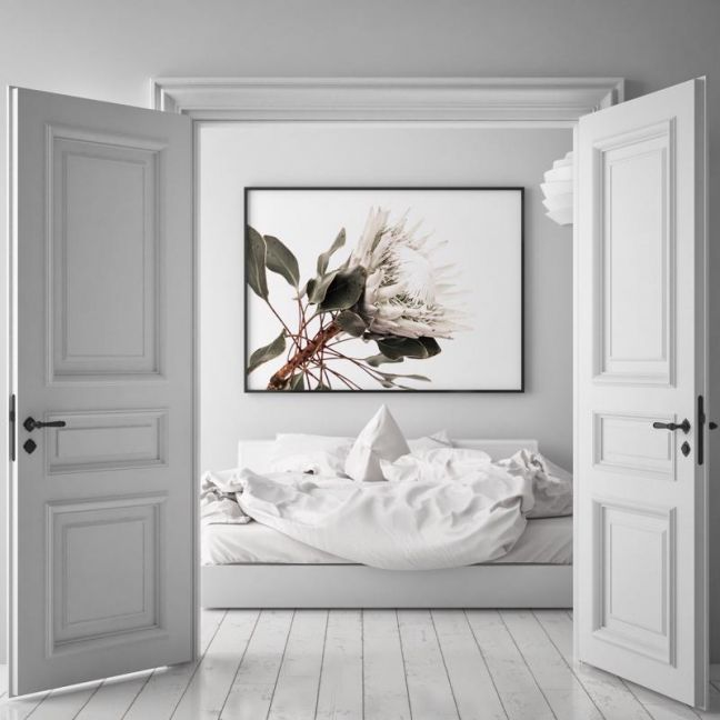 White King | Photographic Art Print by Donna Delaney