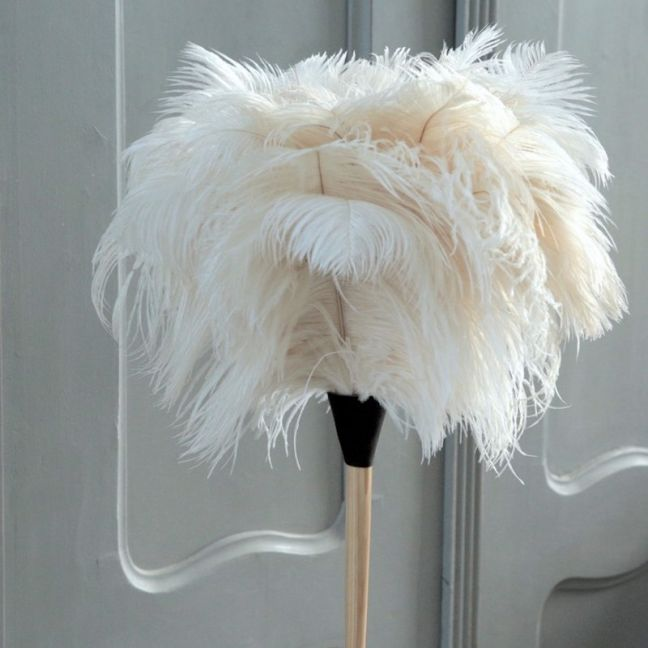 White Osterach Feather Duster Long Handle