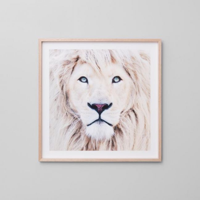 Winter Lion Blonde | Framed Print